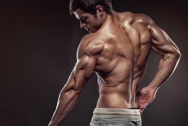 低身長,筋肉,筋トレ,筋肉質